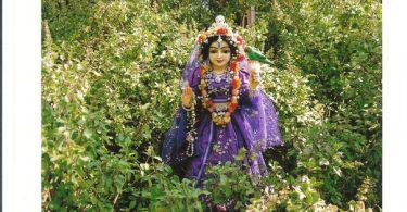 romapada swami on tulsi devi